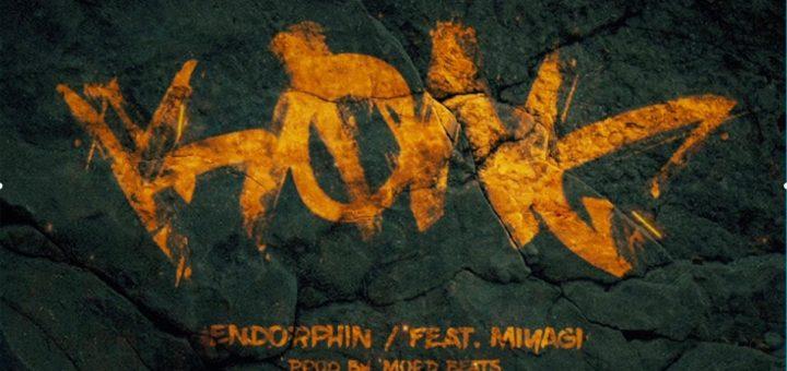 Andy Panda и Miyagi - Endorphin